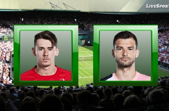 Alex de Minaur vs. Grigor Dimitrov – Prediction – ATP Antwerp (Belgium) – 24.10.2020